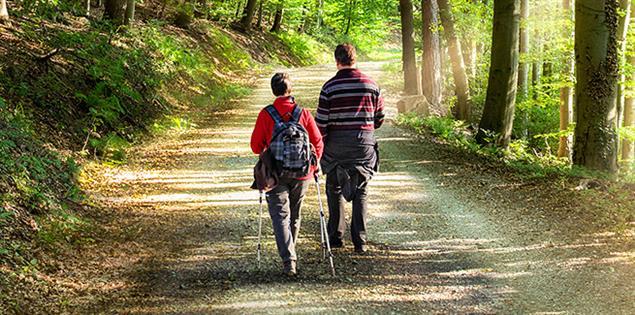 Paar spaziert im Wald zur Erholung